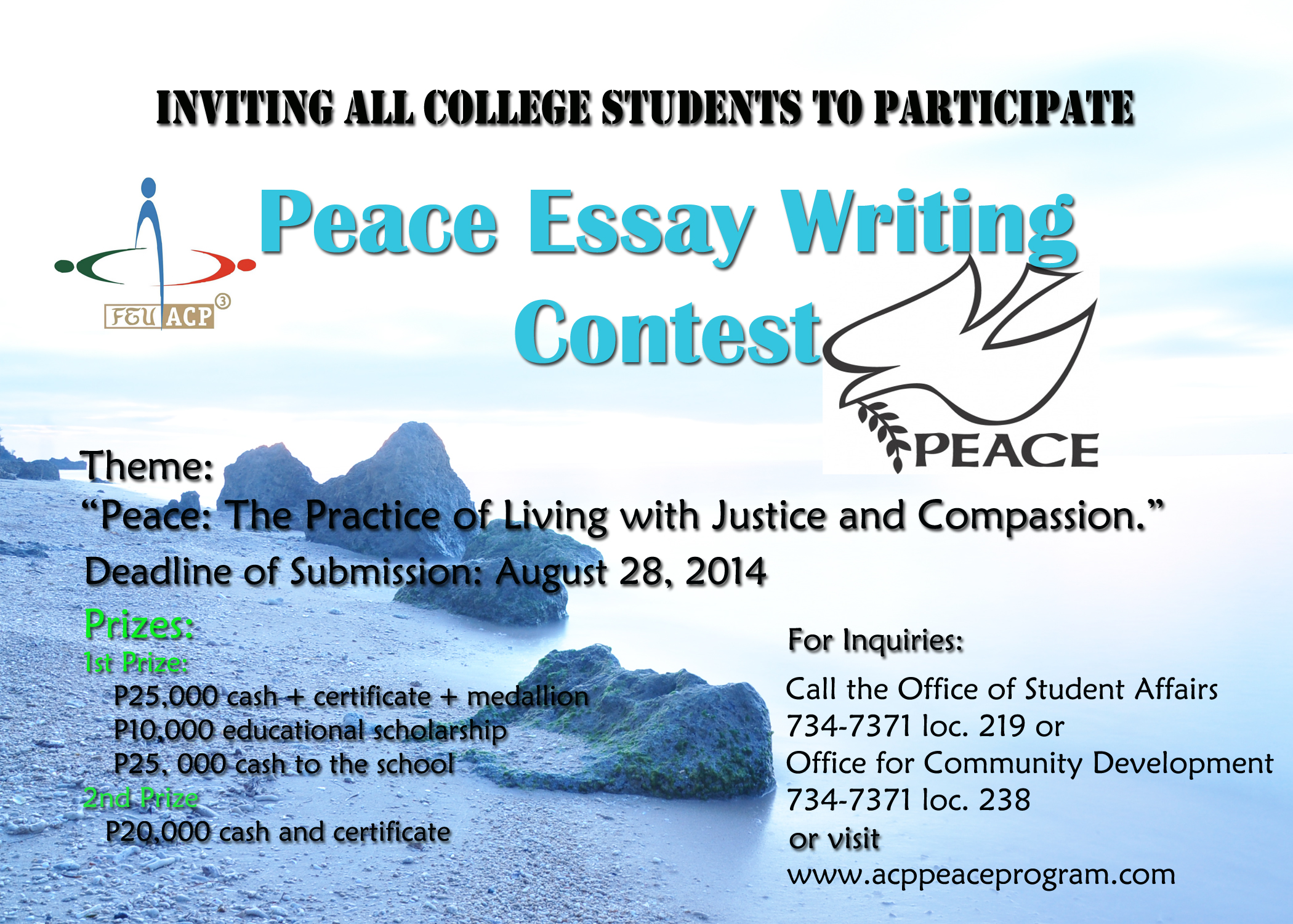 essay writing contests 2011